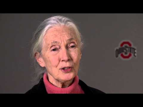 Jane Goodall: 
