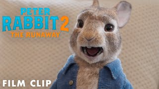 PETER RABBIT 2: THE RUNAWAY Clip – My Voice Isn't Annoying