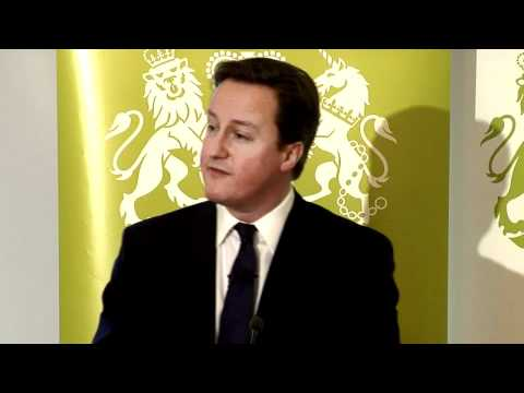 David Cameron - The Government's Programme for Modern Public Services