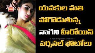 Gemini Tv Serial Nagini Serial Actress Mouni Roy
