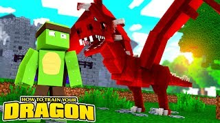 DRAGON ADVENTURE TIME! - How To Train Your Dragon w/TinyTurtle