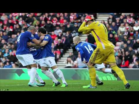 Sunderland 1-1 Everton: Baines levels from the spot after Larsson free-kick