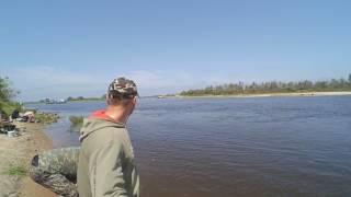 Рыбалка на Припяти ИЮЛЬ 2016