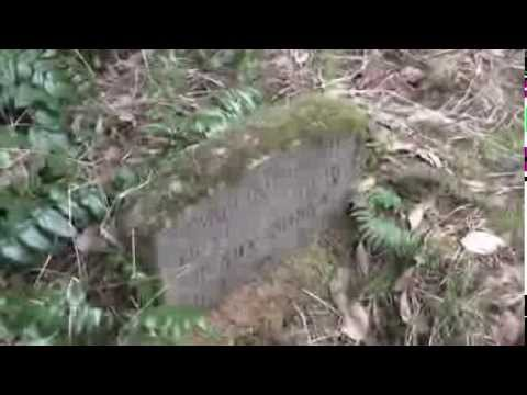 Graveyard Exploration - The Forgotton Graveyard