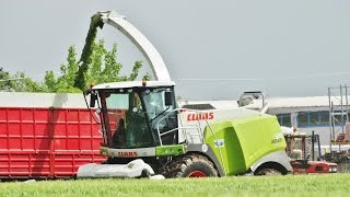 Triticale Silage | Claas Jaguar 970 + Claas Direct Disc 610 + John Deere 7710/6520/6900/6310