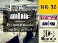 Amônia: por que é usada nos frigoríficos ? (NR-36)