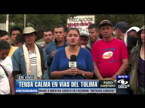 Mujer embarazada muri ó por bloqueo de vía Panamericana en paro cafetero - 27 de febrero de 2013