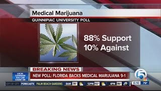 Poll: 88% of Florida voters support medical marijuana