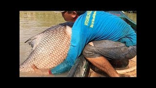 15 Kg+ KATLA fishing। Unbelievable Fisherman vs. River Monsters Underwater Battle!