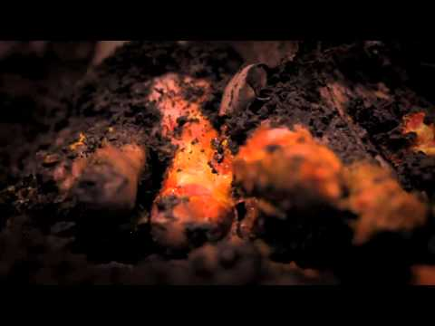 Code Orange Kids - Flowermouth The Leech