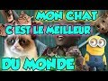 LES MINIONS PARODIENT BLACK M LE PLUS FORT DU MONDE mp3
