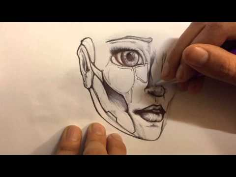 Speed drawing: humanoid face