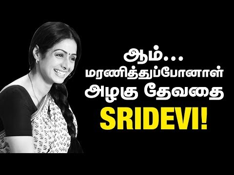 Tribute to Actress Sridevi | #Sridevi Passed away - IBC Tamil thumbnail