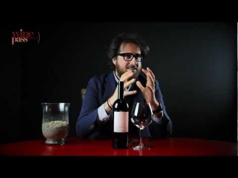 Wine Tasting - Gagliardo - Barolo Preve