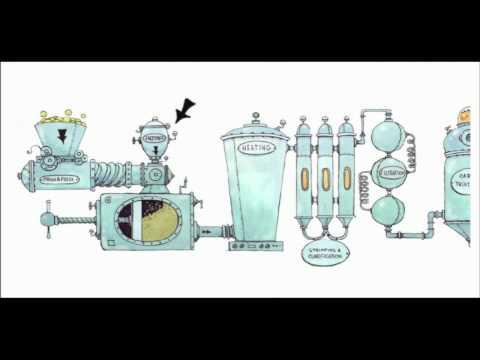 How is Fruit Juice Sugar Processed?