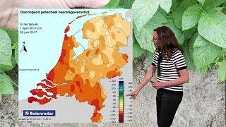 RTL Weer 19:55 uur /180 - RTL WEER