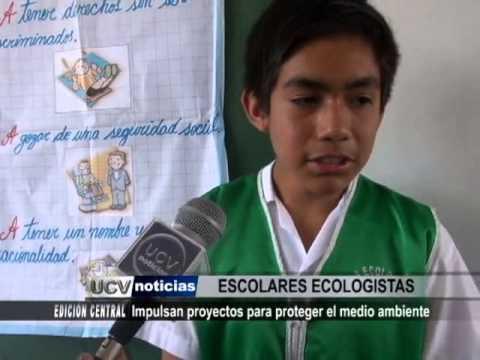 Proyectos para proteger el medio ambiente