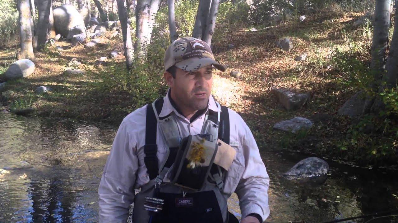 Southern california fly fishing report santa ana watershed for Trout fishing southern california