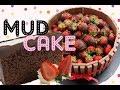 Ultimate Chocolate Mud Cake Recipe! The BEST Chocolate Cake Recipe there is!