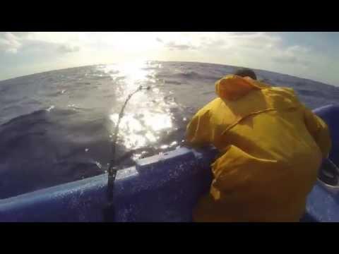 Off Shore Marlin Fishing in Bayahibe, Dominican Republic.