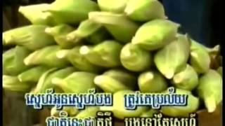 ម្លប់ពោធិបាក់ខែង (ភ្លេងសុទ្ធ) ច្រៀងខារ៉ាអូខេតាម youtube,khmer karaoke sing along.