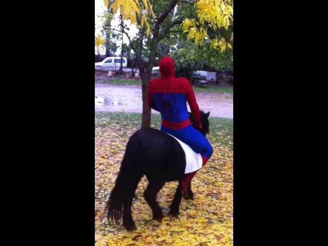 Spiderman cabalgando