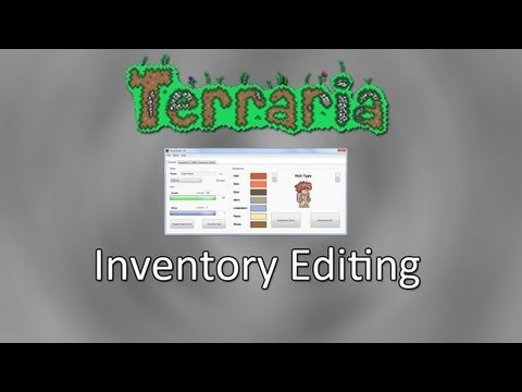 Terraria: Inventory Editing And Character Editing!