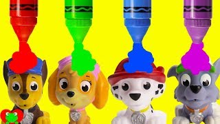 Paw Patrol Pups Learn Colors and Opposites