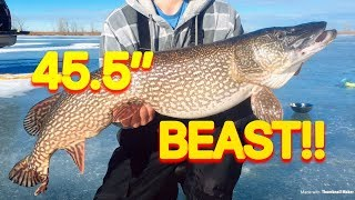 "How to Catch Pike Ice Fishing - 45.5"" TANK!!"