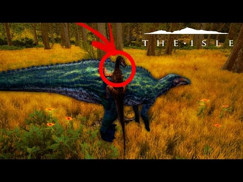 The Isle REALISM - UTAH POUNCES ON SHANT & CLAWS SIDES, PROGRESSION GAMEPLAY & MORE ( Gameplay )
