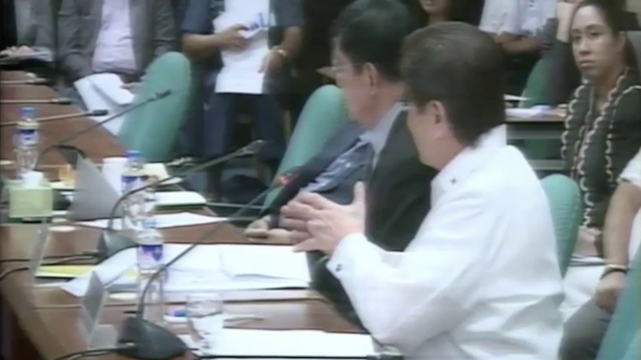 Honasan to CHR head: Don't waste time debating human rights with Duterte
