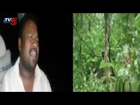 Save Trees | Excellent Song on Trees | Matla Tirupati Song : TV5 News