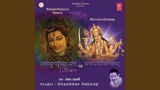Mahamrityunjay Mahadev Trahimam Sharanagatam (Prarthna) , Janm Mrityu Jara Vyadhi Piditam...