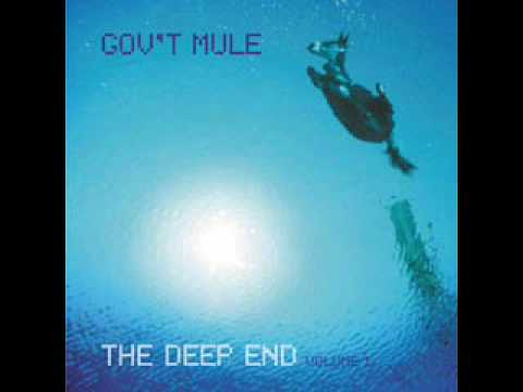 Gov't Mule - Effigy