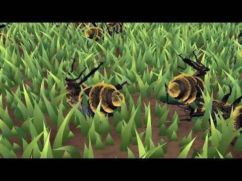 Honeybee decline