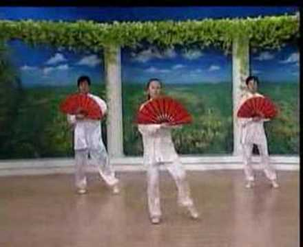 Tai Chi Fan Form (Avi Format)