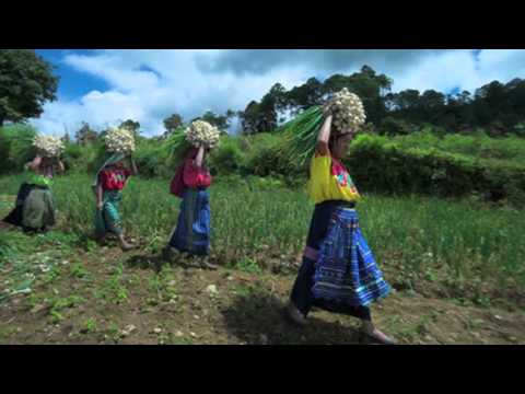 Rural Poverty - In Their Own Words: Guatemala