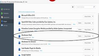 Shockwave Flash Crash Firefox Fix