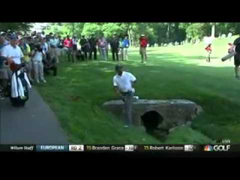 Tiger Woods Misses Cut At Congressional