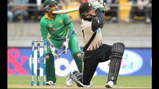 Martin Guptill Fight Bathing Against Pakistan ICC T20 World Cup 2016