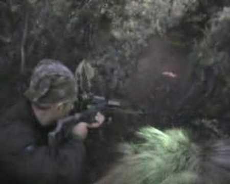 caza de jabali con ballesta