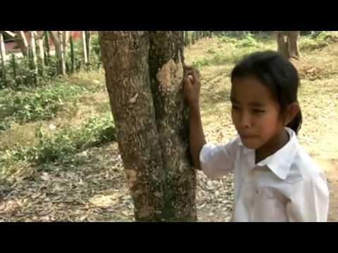 Cambodian Girls Sang For Me, So Sweet video