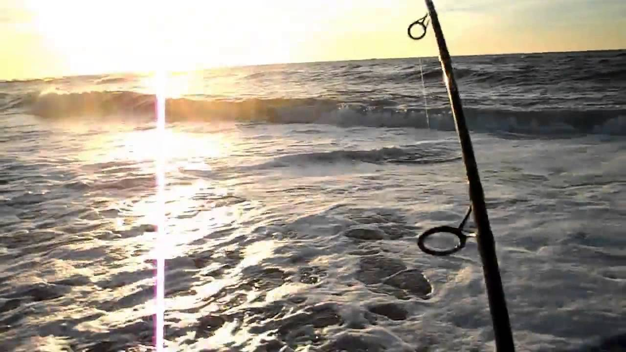 Striped bass surf fishing long island nov 15 2013 youtube for Surf fishing for stripers