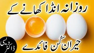 health benefits of eating egg daily in urdu hindi | health tips in urdu hindi