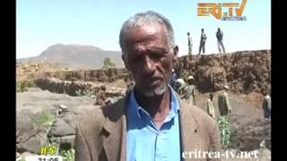 Eritrean News - Tigrinya - 22 March 2015 - Eritrea TV