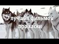 7 лучших фильмов про Хаски mp3