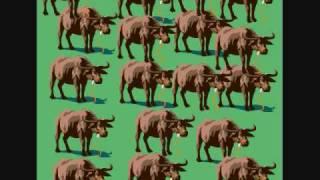 Watch Superchick The Water Buffalo Song video