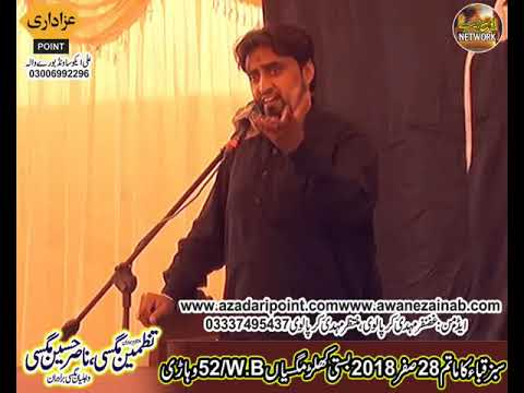 Zakir pahrah Majlis 28 Safar 2018 Chak 52WB Khular Maghsian Vehari