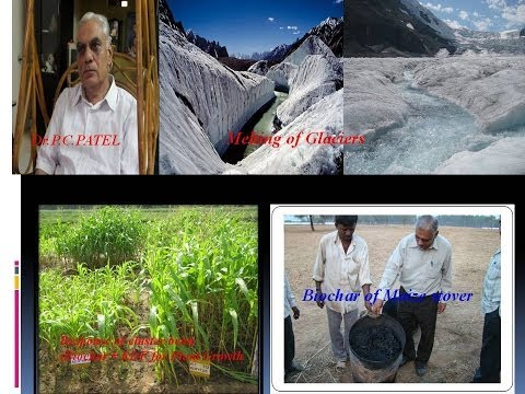 Biochar For Food Security and Climate Change Mitigation By  Dr.P.C.Patel and Mr.Naresh Yadav