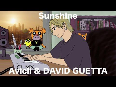 Avicii & DAVID GUETTA / Sunshine (Piano Ver.)